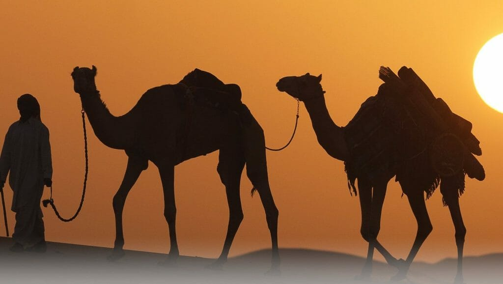 About Dubai - Weather, History and Culture